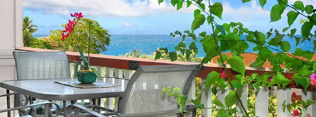 Sunny 2 bedroom Apartment in Koloa - Koloa vacation rentals