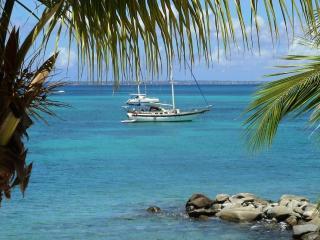 Beachfront condo - Saint Martin French side Marigo - Marigot vacation rentals
