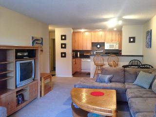 Furnished Quiet Off Street 2Bdr 2 Bath Condo - Boulder vacation rentals