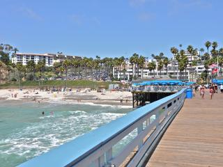 Available Christmas. Family cottage with Hot Tub! - San Clemente vacation rentals