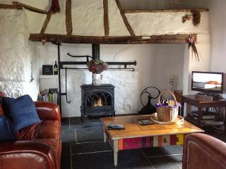 NEW THATCH FARM, thatched cottage, woodburner, off road parking, garden, in Kilmallock, Ref 28611 - Kilmallock vacation rentals