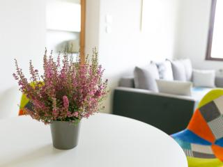 Bright, big Gardenapartment close to Vienna - Stockerau vacation rentals