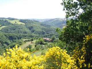 Country House Il Biroccio - Urbino vacation rentals