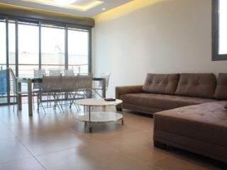 Eden Ben-Yehuda 50 Apartment - Tel Aviv vacation rentals