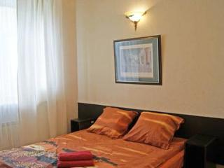 Studio with free WIFI near Kazansky Cathedral - Russia vacation rentals