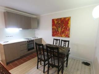 A stunning yet cozy studio apartment - 3658 - Tallinn vacation rentals