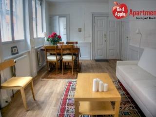 City center apartment. Historic Copenhagen house - 6066 - Copenhagen vacation rentals