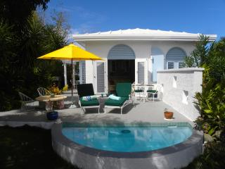 Charming 1 bedroom cottage with pool - Saint Thomas vacation rentals
