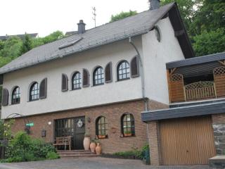 LLAG Luxury Vacation Apartment in Idar-Oberstein - 614 sqft, parking, close to publish transportation… - Bernkastel-Kues vacation rentals