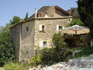 SAIGNON - VILLAGE HOUSE IN PROVENCE -SOUTHERN FRAN - Saignon vacation rentals