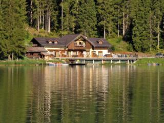 Chalet al Lago Appartamento Coldai - Alleghe vacation rentals