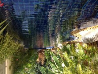 Zenith's Lagoon B & B - Sao Hai vacation rentals