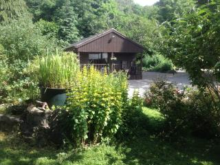 Beautiful Cabin with Deck and Internet Access - Pant vacation rentals