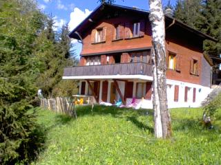 Breath taking mountain and lake view chalet - Schwarzsee vacation rentals