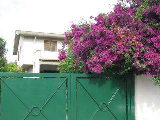 1 bedroom B&B with Internet Access in Anzio - Anzio vacation rentals