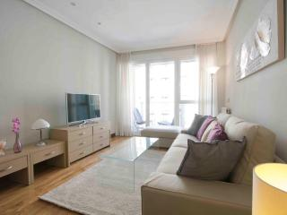 Nice Condo with Internet Access and Washing Machine - San Sebastian vacation rentals