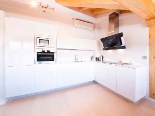 2 bedroom Apartment with Internet Access in San Sebastian - San Sebastian vacation rentals