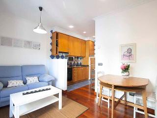 Perfect 1 bedroom Condo in San Sebastian - San Sebastian vacation rentals