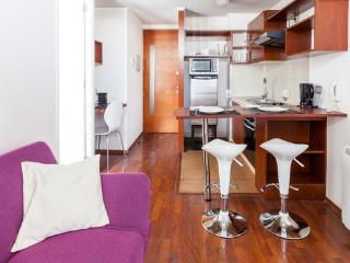 Central and cozy apartment close to Metro - Santiago vacation rentals