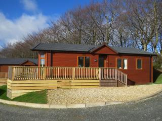 Charming 2 bedroom Lodge in Tavistock - Tavistock vacation rentals