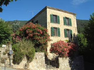 7 bedroom Manor house with Internet Access in Seillans - Seillans vacation rentals