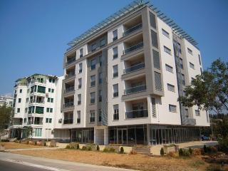 Apartment Podgorica to rent for a day, two, week - Podgorica vacation rentals