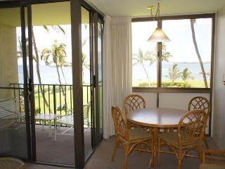 Kihei Surfside 309 - Kihei vacation rentals