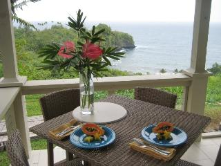 Onomea Bay Cliffside Cottage - Hakalau vacation rentals