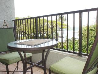 Perfect House with Internet Access and Shared Outdoor Pool - Hilo vacation rentals