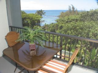 Maunaloa Shores 508 - Hilo vacation rentals