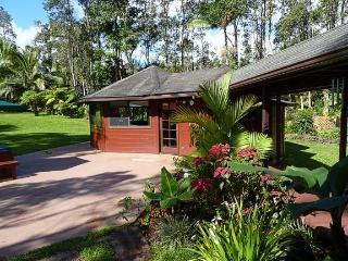Hale Kauka - Keaau vacation rentals