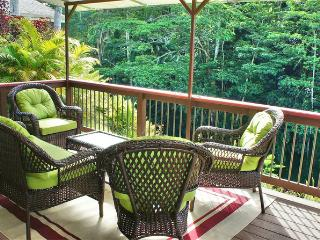 Perfect House with Internet Access and Television - Hilo vacation rentals