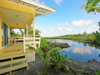 Hula Cove - Pahoa vacation rentals