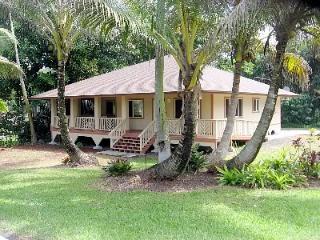 Gorgeous 3 bedroom House in Pahoa - Pahoa vacation rentals