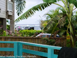 Comfortable House with Internet Access and Television - Kapoho vacation rentals