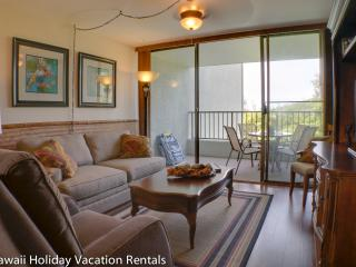 Maunaloa Shores 307 - Hilo vacation rentals