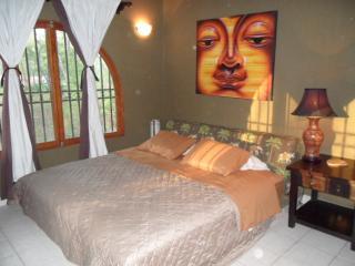 Casa Amarilla is a charming 3 bedroom, 2 bath home - Playa Grande vacation rentals