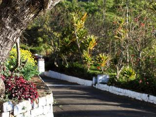 Sunshine Bungalow - Ootacamund vacation rentals