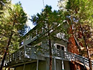Rainbow Trout Lodge - close to Village and lake - Lake Arrowhead vacation rentals