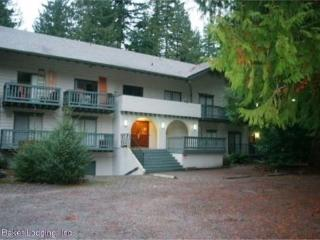Snowline Lodge Condo #77 - close to hiking and skiing at Mt. Baker! Now has WIFI! - Glacier vacation rentals