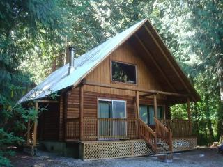 Mt. Baker Rim Cabin #45 - A RUSTIC CABIN IN THE MOUNTAINS - Glacier vacation rentals