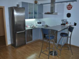 Studio with free parking, free bike rental and AC - Prague vacation rentals
