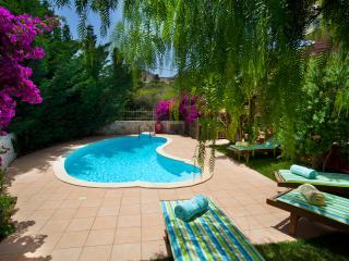 Beautiful 2 bedroom Agia Efimia Villa with Internet Access - Agia Efimia vacation rentals