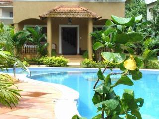 Elegant Spacious Villa - Aldeia Serenia - Anjuna vacation rentals