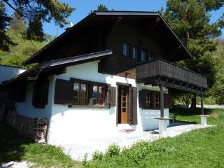 Bright 4 bedroom Chalet in Vercorin with Television - Vercorin vacation rentals