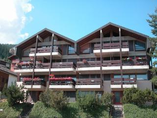 1 bedroom Condo with Wireless Internet in Vercorin - Vercorin vacation rentals