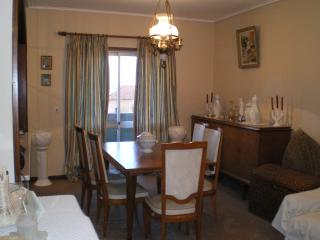 Nice Condo with Dishwasher and Kettle - Espinho vacation rentals