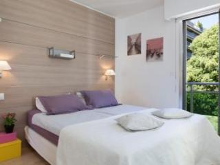 Velasquez One Bed - Cote d'Azur- French Riviera vacation rentals