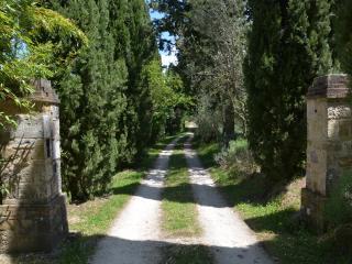Il Casettino - Radicondoli vacation rentals