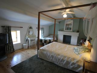 The Green Gîte at TLC Gites and B and B - Etusson vacation rentals